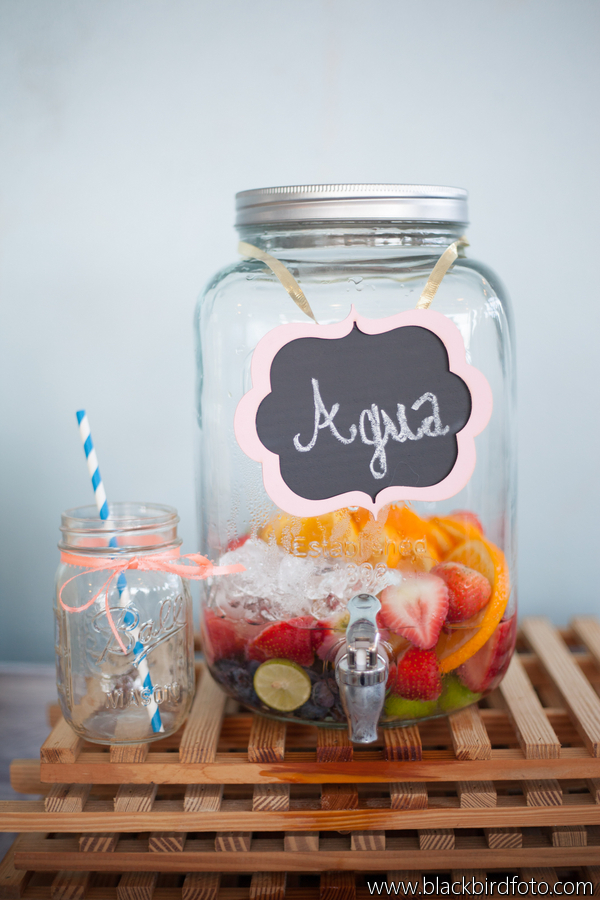 Fruit Infused Water Drink Canister Striped Straws Coral Aqua
